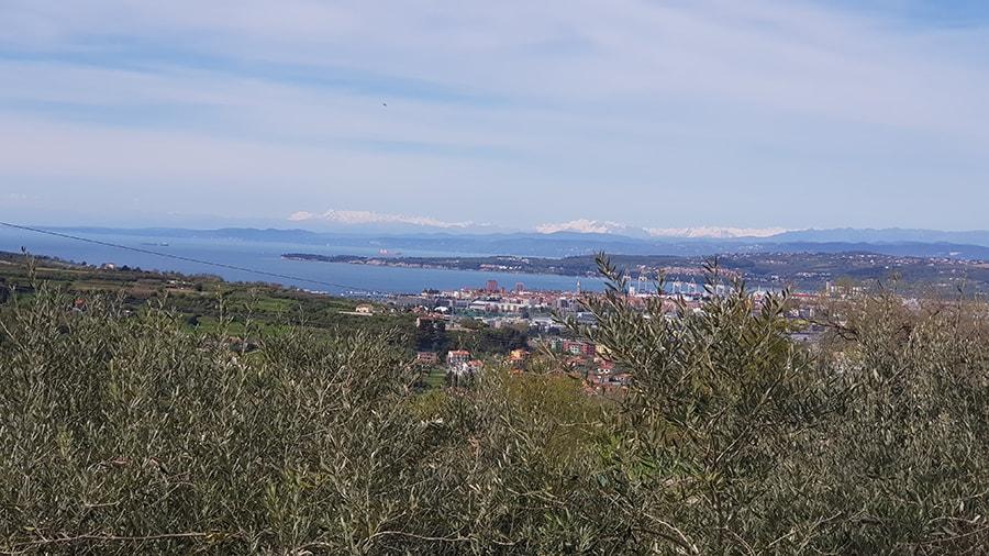 panorama 5-min
